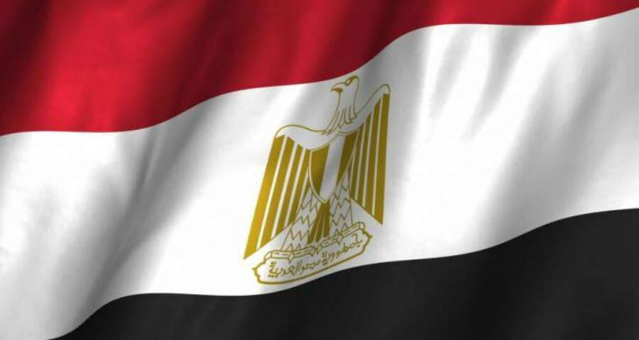 خارجية مصر:العمليات العسكرية التركية بعفرين هي انتهاك جديد للسيادة السورية