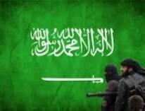 بعد قرابة السنة والنصف من إعلان قوات التحالف الدولي بقيادة الولايات المتحدة الأميركية الحرب على تنظيم الدولة الإسلامية داعش في كل من العراق وسوريا.    فإن تنظيم داعش ليس فقط لم يتم القضاء عليه. بل أنه يزداد تمددا وتوسعا وقو