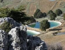 محافظة عكار تشكل ثمن مساحة لبنان ( 80 الف هكتار) وتتميز عن باقي